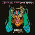 2LPHiatus Kaiyote / Choose Your Weapon / Vinyl / 2LP / Coloured