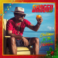 CDShaggy / Christmas In The Islands / Deluxe