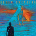 LP / Dream Unending / Tide Turns Eternal / Vinyl