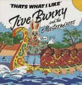 LPJive Bunny & The Mastermixers / Thats What I Like / Vinyl