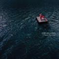 LP / Williams Dar / I'll Meet You Here / Vinyl