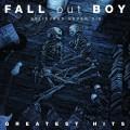 2LPFall Out Boy / Believers Never Die-Gratest Hits / Vinyl / 2LP