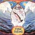 CDHillage Steve / Fish Rising / Remaster
