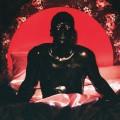 LPNaeem / Startisha / Vinyl