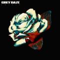 CDGrey Daze / Amends / Digibook