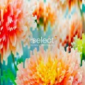 2CDVarious / Global Underground:Sellect #5 / 2CD