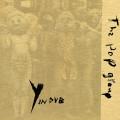 CD / Pop Group / Y In Dub
