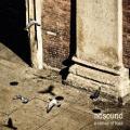 CD/DVDNosound / Sense Of Loss / CD+DVD / Digipack