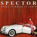 CDSpector / Enjoy It While It Lasts