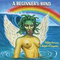 LP / Stevens Sufjan & Angelo De Augustine/Beginner's Mind/Vinyl / Beginner's Mind / Vinyl