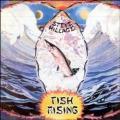 CDHillage Steve / Fish Rising / Remastered