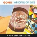 CDGong / A Wingful Of Eyes