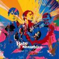 CDBabyshambles / Sequel To The Prequel