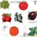 LPCream / Best Of Cream / Vinyl