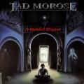 CDTad Morose / Mended Rhyme