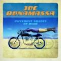 LPBonamassa Joe / Different Shades Of Blue / Vinyl