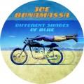 LPBonamassa Joe / Different Shades Of Blue / Vinyl / Picture