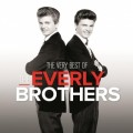2LPEverly Brothers / Very Best Of / Vinyl / 2LP