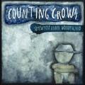 CDCounting Crows / Somewhere Under Wonderland