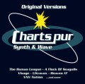 2CDVarious / Charts Pur / Synth & Wave
