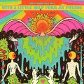 LPFlaming Lips / With A Little Help From My Fwends / Vinyl