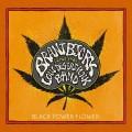 CDBrant Bjork & The Low Desert Punk Band / Black Power Flower