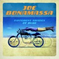 CDBonamassa Joe / Different Shades Of Blue