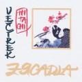 LPZrcadla / Večírek Hitachi / Vinyl