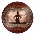 LPBonamassa Joe / Ballad Of John Henry / Vinyl / Picture