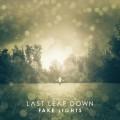 CDLast Leaf Down / Fake Lights