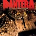 2LPPantera / Great Southern Trendkill / Vinyl / 2LP