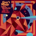 2CDGov't Mule Feat.John Scofield / Sco-Mule / 2CD