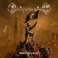 CDShadowbane / Facing The Fallout