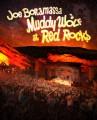 2DVDBonamassa Joe / Muddy Wolf At Red Rocks / 2DVD