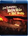 Blu-RayBonamassa Joe / Muddy Wolf At Red Rocks / Blu-Ray