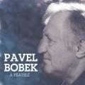 2CDBobek Pavel / Pavel Bobek a přátelé / 2CD