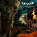 CDWhyzdom / Symphony For A Hopeless God