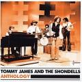 CDJames Tony & The Shondells / Anthology