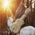 2CDDeath In Vegas / Trans Love Energies / 2CD / Digipack