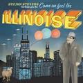 2LPStevens Sufjan / Illinoise / Vinyl / 2LP
