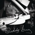 CDGuy Buddy / Born To Play Guitar