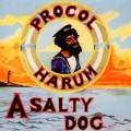 2CDProcol Harum / A Salty Dog / Remastered / 2CD
