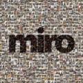 2LPŽbirka Miro / Miro / Vinyl / 2LP