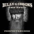 CDGibbons Billy & The BFG'S / Perfectamundo