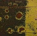 LPMugstar / Magnetic Seasons / Vinyl