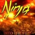 CDNinja / Into The Fire