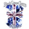 DVD/CDBlack Stone Cherry / Livin'Live / Birmingham UK / DVD+CD