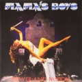 LPMama's Boys / Power And Passion / Vinyl