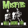 LPMisfits / Walk Among You / Live @Michigan Union Ballroom / Vinyl