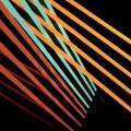 2LPShit Robot / What Follows / Vinyl / 2LP